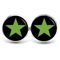 Druckknopf / Ohrstecker / Ohrhänger grün / schwarzer Stern