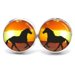 Druckknopf / Ohrstecker / Ohrhänger Pferd bei Sonnenuntergang