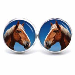 Druckknopf / Ohrstecker / Ohrhänger Pferd Pferdekopf braun